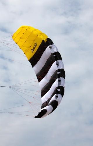 Zebra Kite Checka